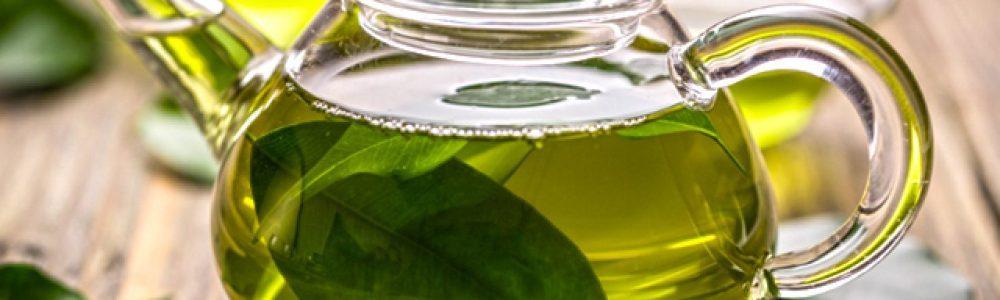zielona herbata obraz